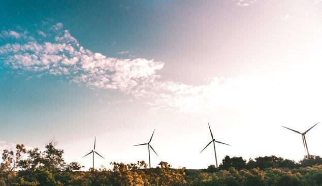 Roteiro para a descarbonização